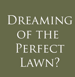 JD Lawn Care can help you get the beautiful lawn your dreaming of.