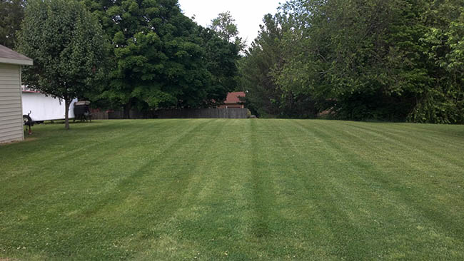 Landscaping - Photos Of Yards Mowed And Landscaping For JD Lawn Care - Clarksville TN